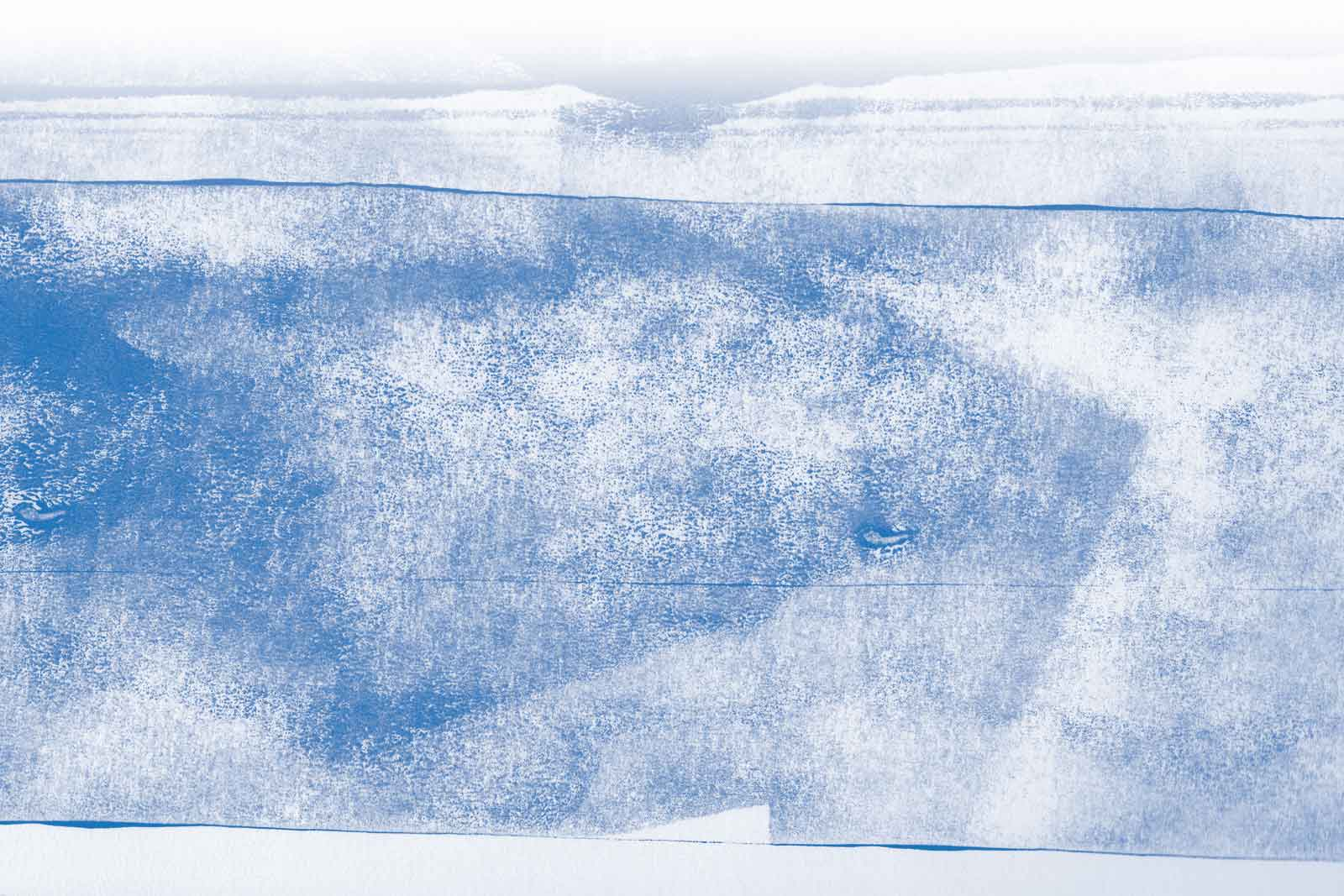 Privacy, cookies & disclaimer